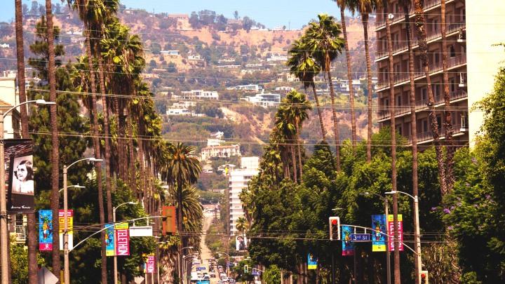 Photo: Flavia Caldas // Location: Beverly Hills